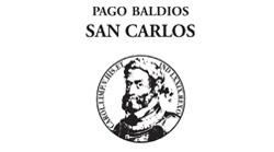 pago-web-logo