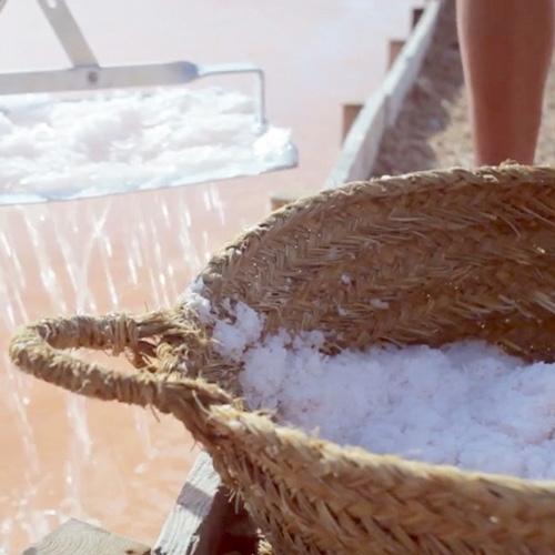 salt+kurv-web